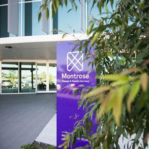 Montrose office at Darrra